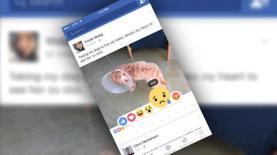 הלייקים החדשים של פייסבוק, צילום: צילום מסך