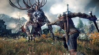The Witcher 3, צילום: צילום מסך