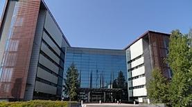 מטה נוקיה, צילום: ויקיפדיה